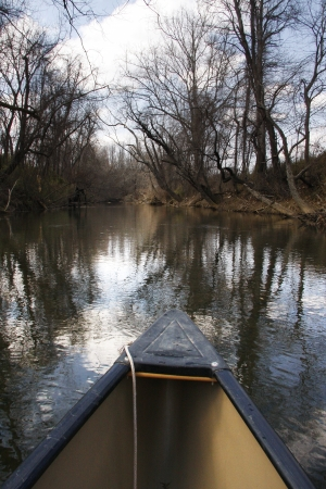 A canoe ride down the French Broad River in North Carolina 免版税图像