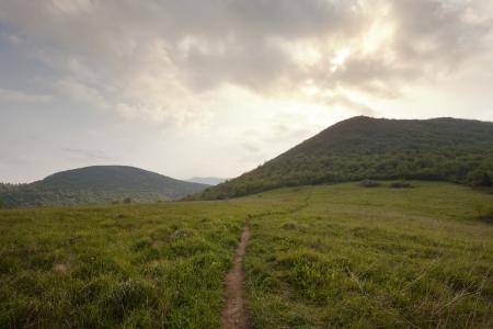 Sam s Knob Trail in Black Blasam area off the Blue Ridge Parkway