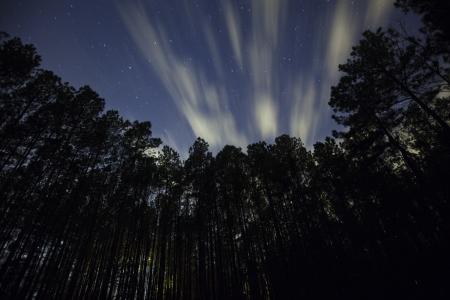 stargaze: Clouds moving across the night sky Stock Photo