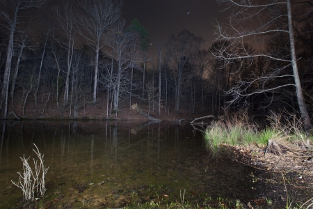 A cove on Lake Norman, NC at night. photo