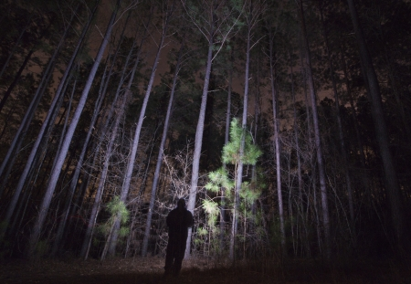 A silhouette of a person lighting up trees in a forest at night