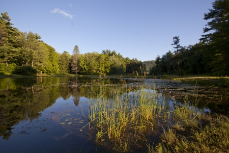 acres: Pond at Wild Acres Park in Pittsfield, Massachusetts Stock Photo