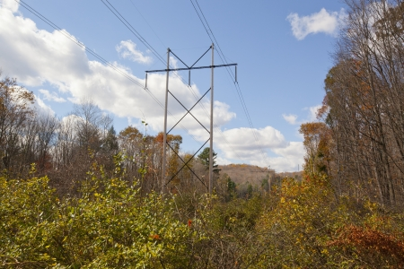 A view of high tension wires with autumn foliage Stock Photo - 23950859