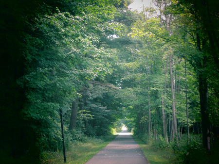 A scenic along the Ashuwillticook Rail Trail in the Berkshire Mountains of Western Massachusetts. photo