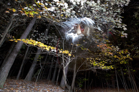 nightmarish: A long exposure photograph creating the impression of a haunted forest at night with a ghostly figure lurking in the shadows. Stock Photo
