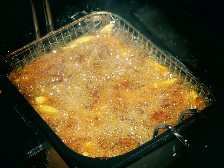 what is the best fryer oil