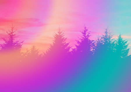 A colorful abstract psychedelic background of silhouette coniferous trees. photo