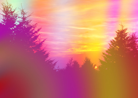 trippy: A colorful abstract psychedelic background of silhouette coniferous trees. Stock Photo