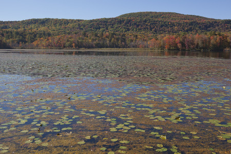 berkshire: An autumn view of Cheshire Lake in the Berkshire Mountains of Western Massachusetts.
