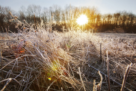 A frosty sunrise view in the Berkshire Mountains of Western Massachusetts.