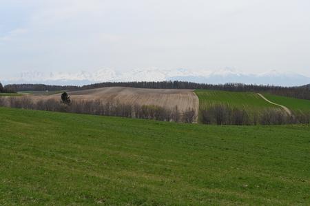 biei green land