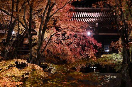 autumn leaves at kiyomizu bansyu