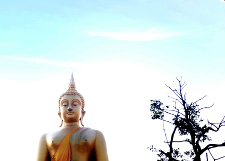 eye: Golden buddha
