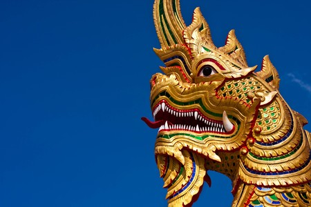 gold snake with blue sky photo