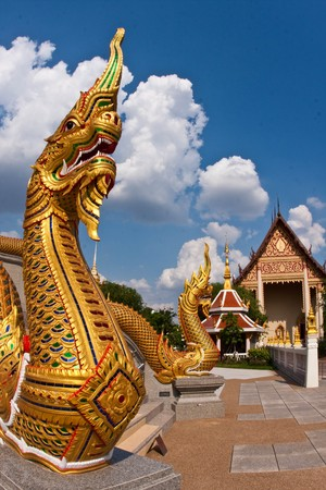 golden nagas in the thai temple photo