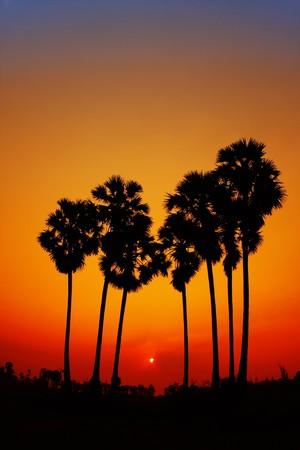 dramatic sunrise: light of the sun