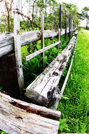 the wood fence photo