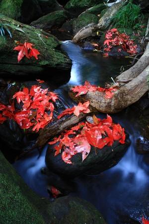 waterfall on the mountain Stock Photo - 7382264