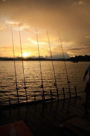floating  on the lake photo