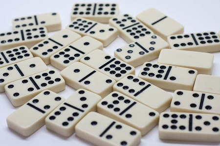 white domino photo