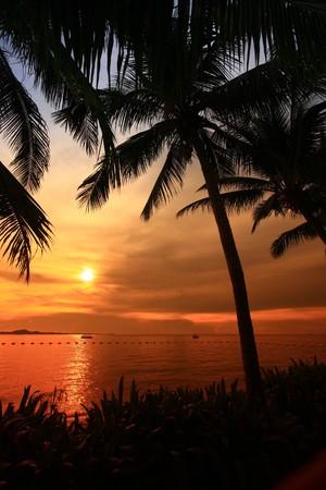 sun set on the beach photo
