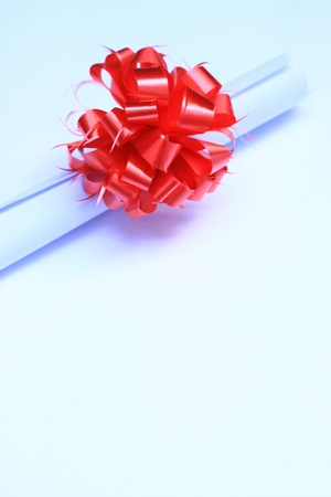 red bow photo