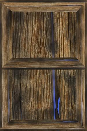 wood shelf photo