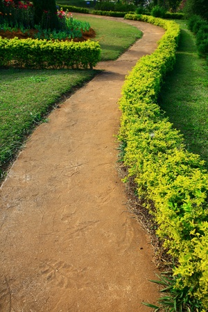 pave: in the garden
