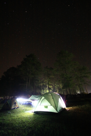 settled: camping on night