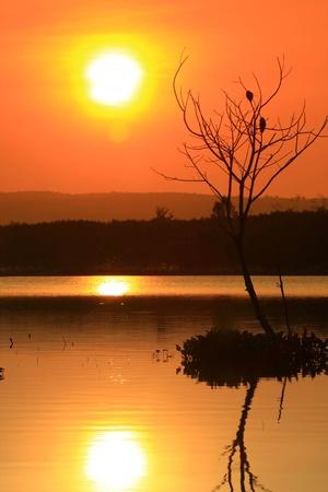 sunset on the lake Stock Photo - 11977590