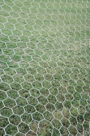 football net photo