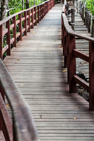 wood bridge in park photo