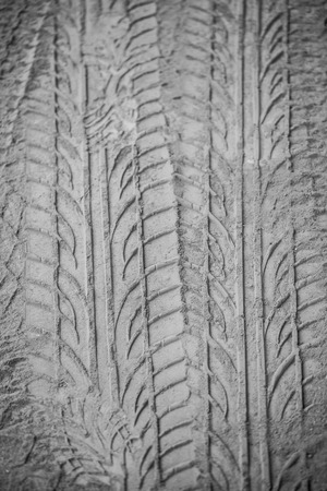 Marks of wheels that run on the sand  photo