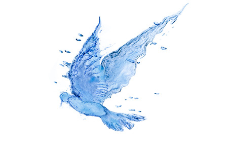 bird made from splash water. Imagens - 31046721