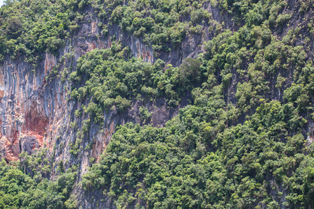 southern of thailand: The limestone cliffs of southern Thailand