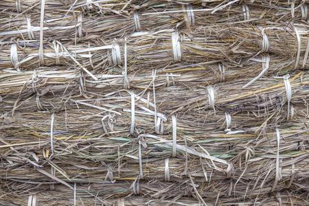 straw background. photo