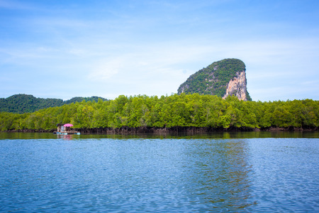 panyi: Koh Phang Nga in southern Thailand.
