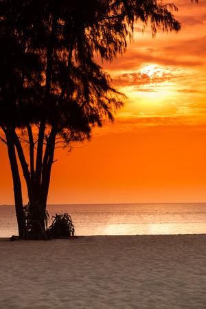 ligh: evening ligh on the beach. Stock Photo