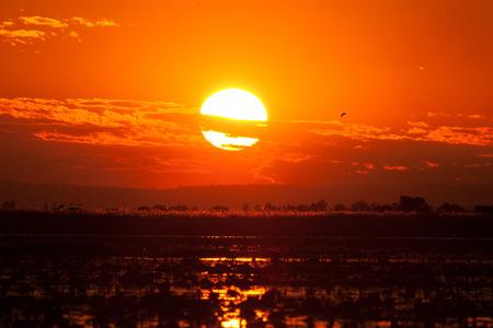 sunset on the lake. Stock Photo