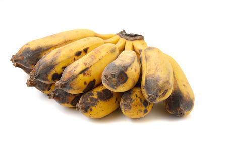 moulder: over ripe bananas isolated on white background ( rotten bananas )