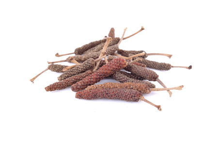 piper: Long pepper or Piper longum isolated on white background