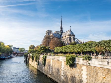 notre dame cathedral: Notre dame cathedral is landmark of Paris, France, under blue sky