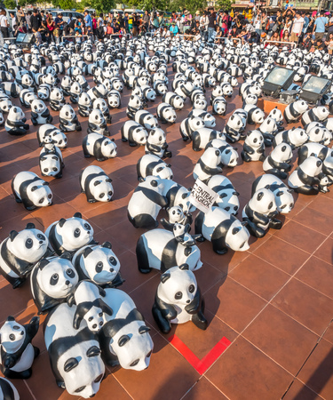 papier mache: BANGKOK - MARCH 13: 1600 pandas world tour, papier mache sculptures of pandas with recycled paper, exhibited at Giant Brahmin swing in Bangkok, Thailand, was taken on March 13, 2016.