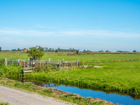 zaan: City scene of Zaan Schans, small town of historic windmills, shown rural scenes under clear blue sky