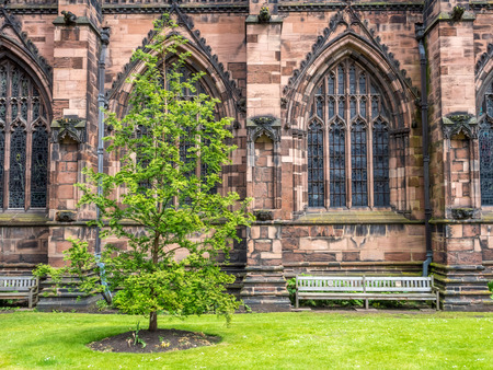 Little corner park and green tree with bench along Gothic stonework of Chester Cathedral in England Stock Photo