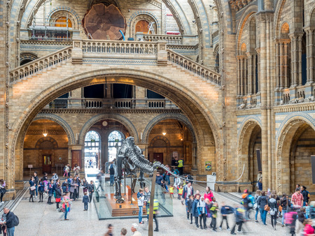 museum visit: LONDON - MAY 25: Interior architecture of Main hall of Natural History Museum in London, England, was taken on May 25, 2016.