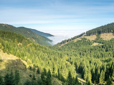 Kolbensattel mountain near Oberammergau town view scene, pines, evergreen forest, mountains under cloudy sky in autumn season in Germany