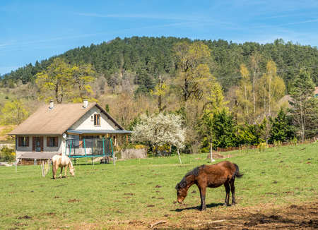 Small farm and horse in Chichilianne, small countryside town in France 에디토리얼