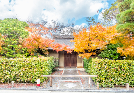 Exterior design of classic Japanese style house building with autumn leaves tree at front garden Editorial