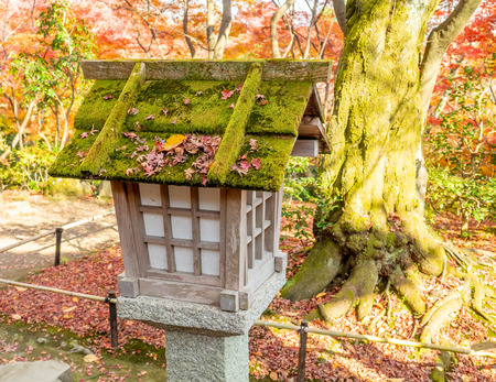 Wooden Japanese style lantern in outdoor garden with colorful autumn leaves tree
